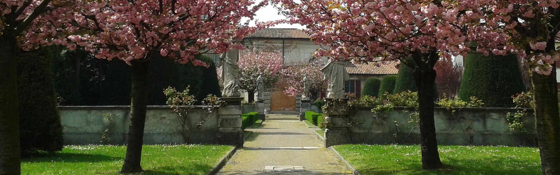 giardino-in-fiore