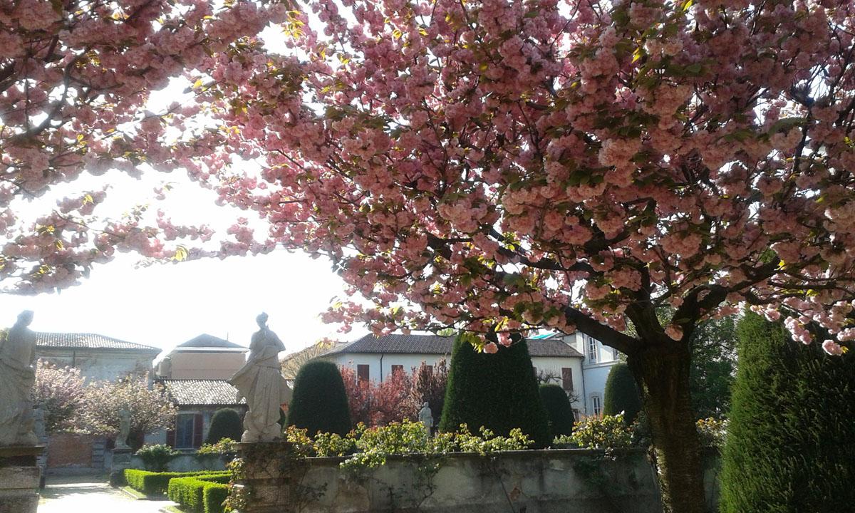 giardino in fiore e statue 700